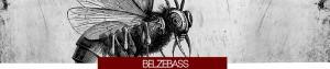banner_Ndp_Belzebassx800